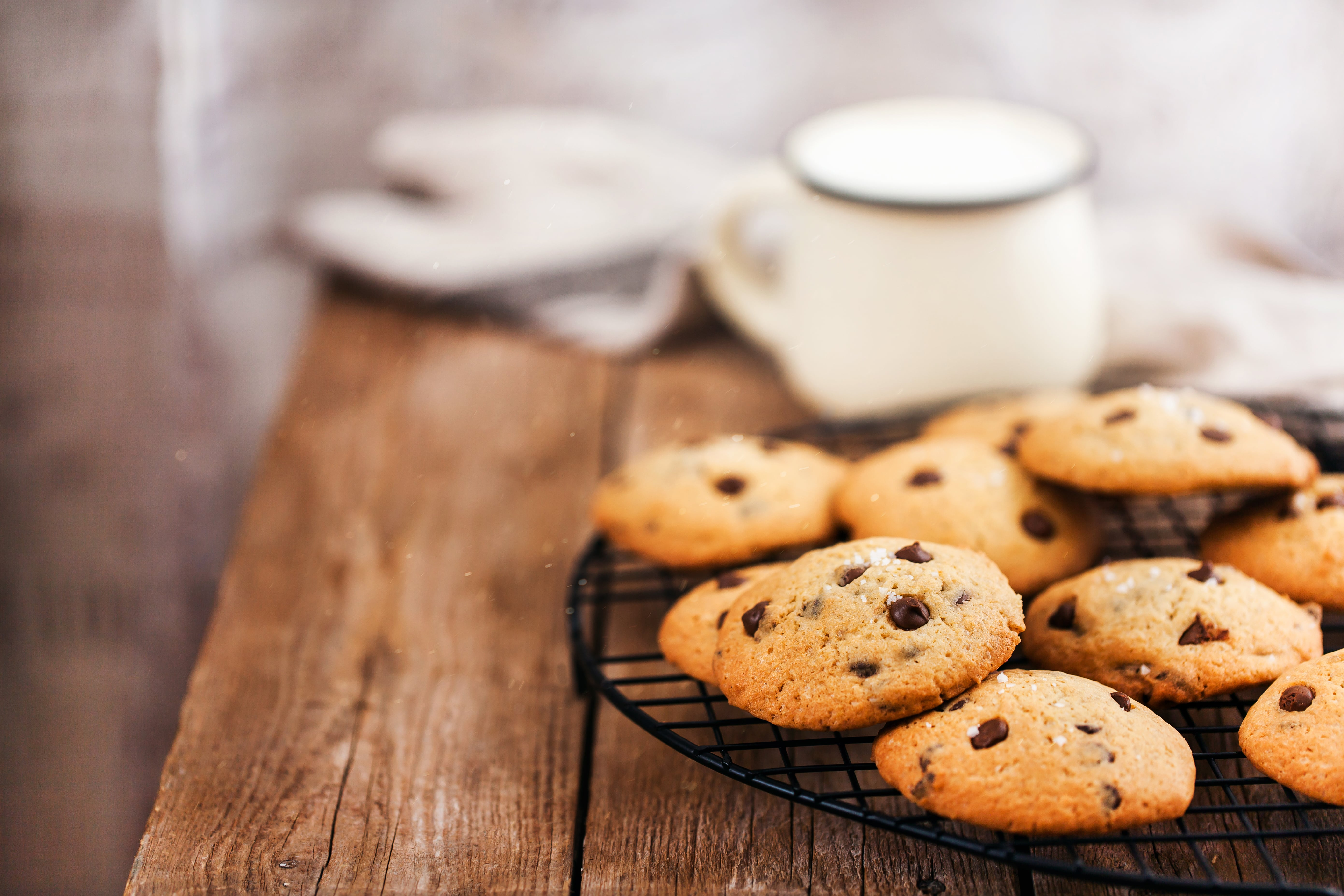 Homemade Freshly Baked Chocolate Chip Cookies